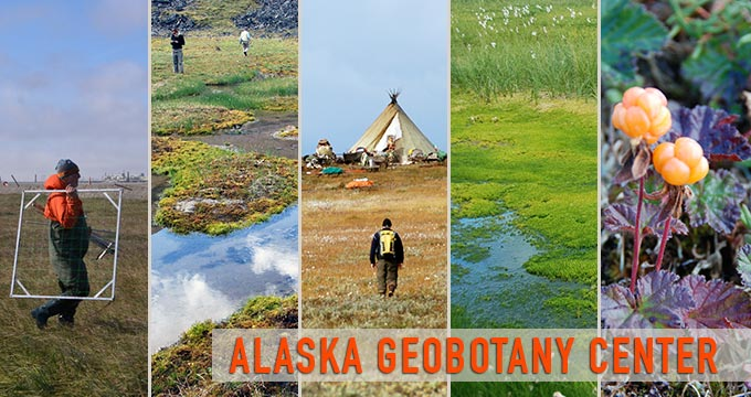 Alaska Geobotany Center